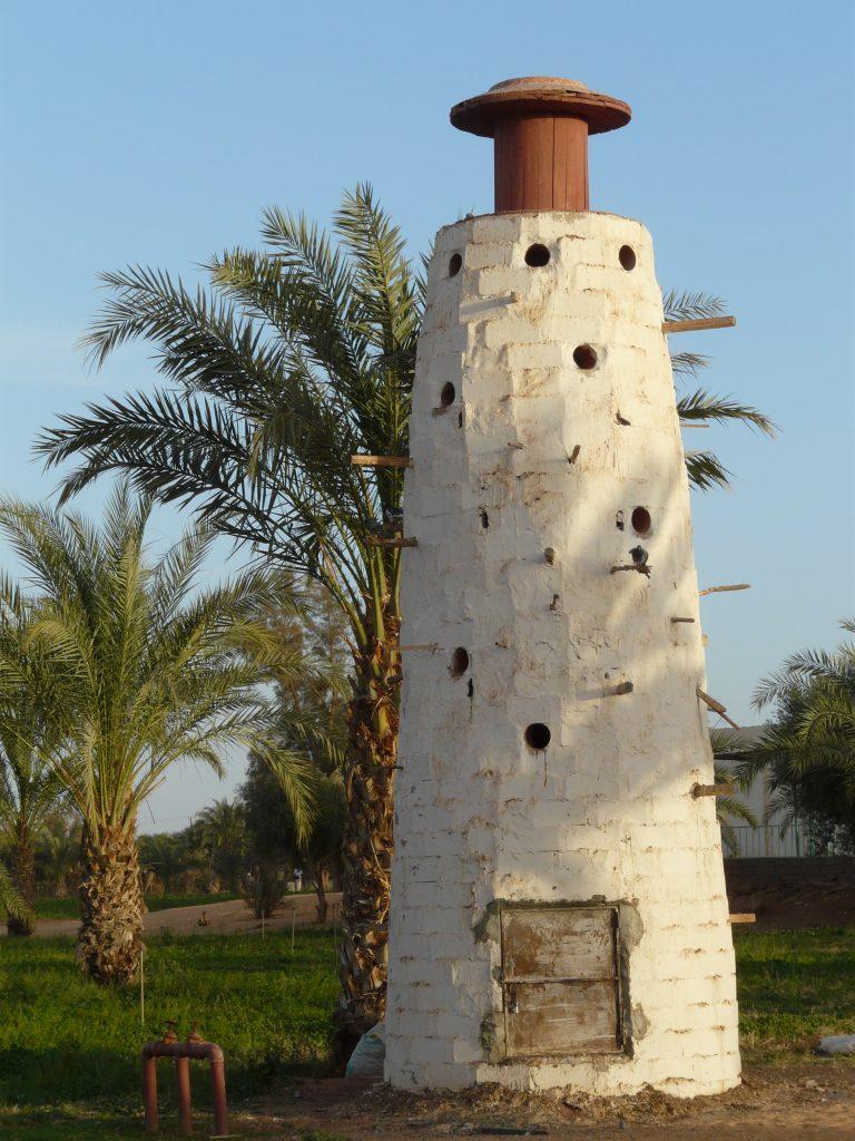 Libyeni_0209 362